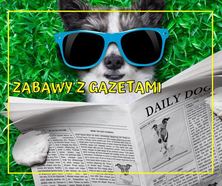 Eco zabawy animator Rzeszów
